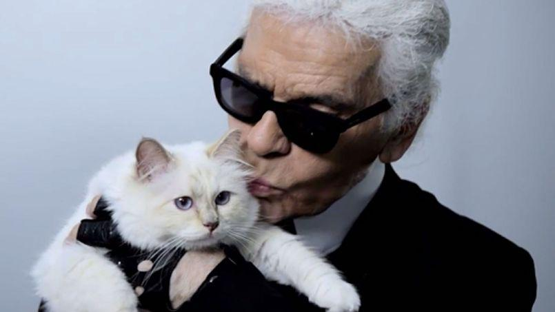 The Fashion Outsider: Largerfeld's cat can afford a house in Sydney, so why can't you?