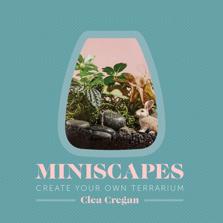 Book review: Miniscapes