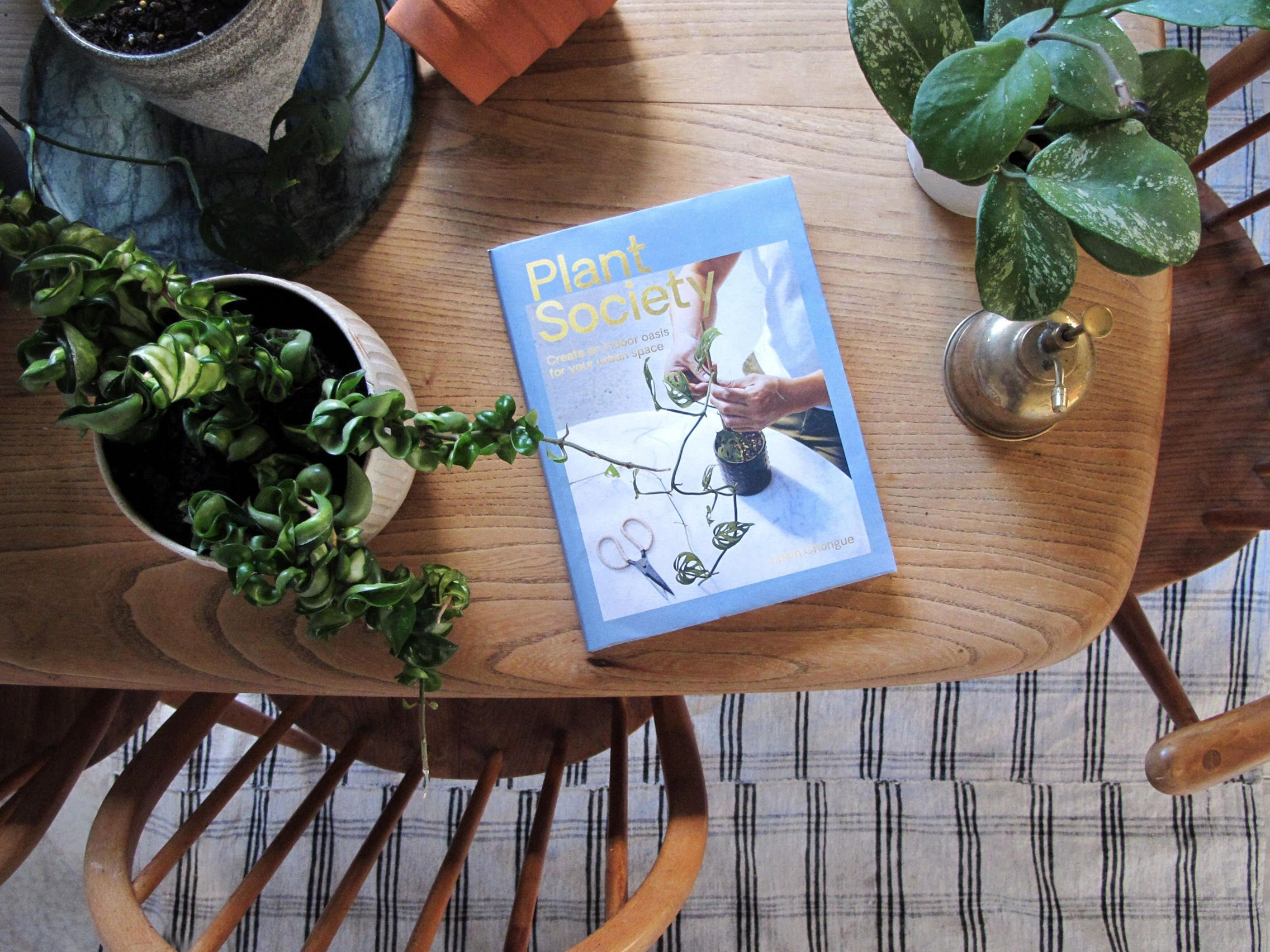If acquiring a green thumb is on your to-do list, this book is the place to start