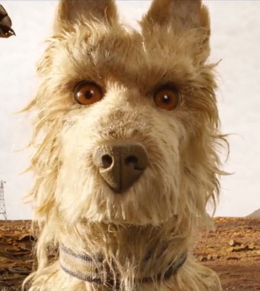 Watch: Wes Anderson releases a new clip for Isle of Dogs