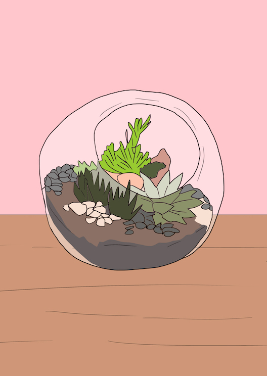 Terrarium-building workshops to cultivate your green thumb