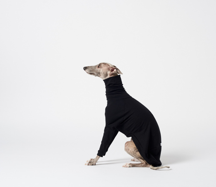 This Melbourne label makes turtlenecks for whippets