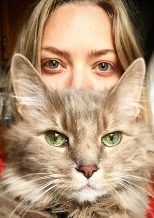 New survey confirms cat owners are a unique breed