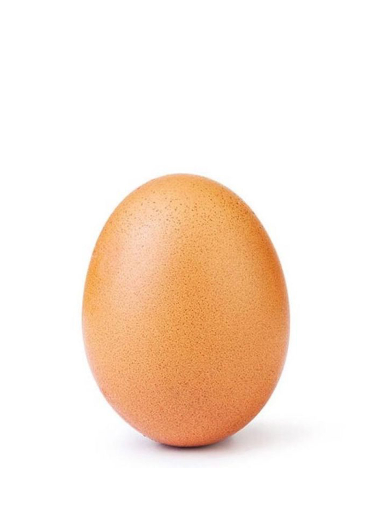 The World Record Egg was actually a mental health campaign this whole time
