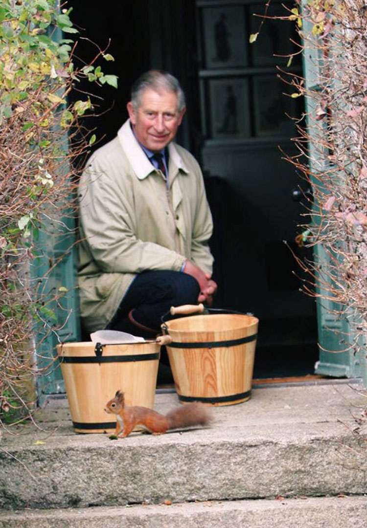 Prince Charles has opened a bed and breakfast so you can live like a royal